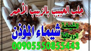 جلب الحبيب بالزبيب الأحمر الشيخة الروحانية شيماء المؤذن 00905550855443